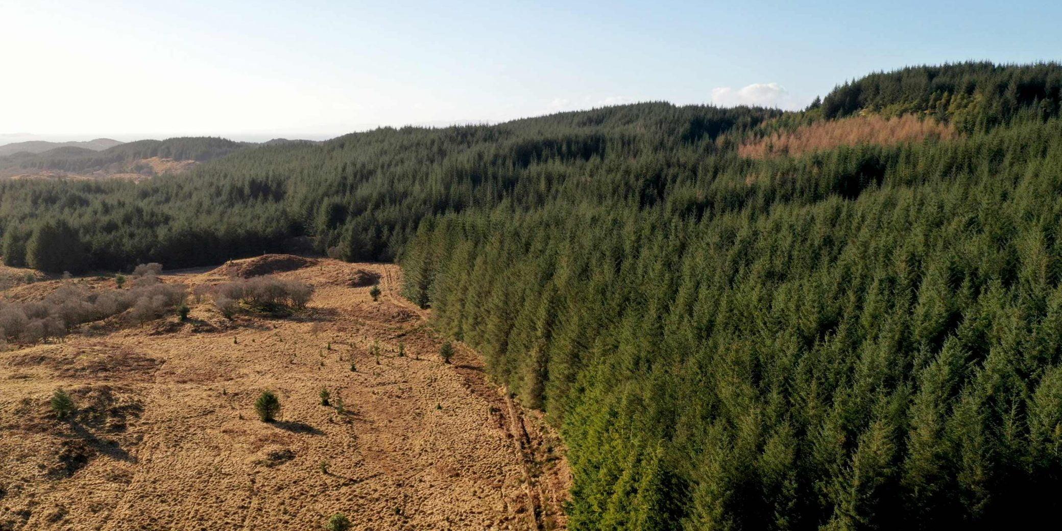 Goldcrest | Property - Loch a'Bharra - 03