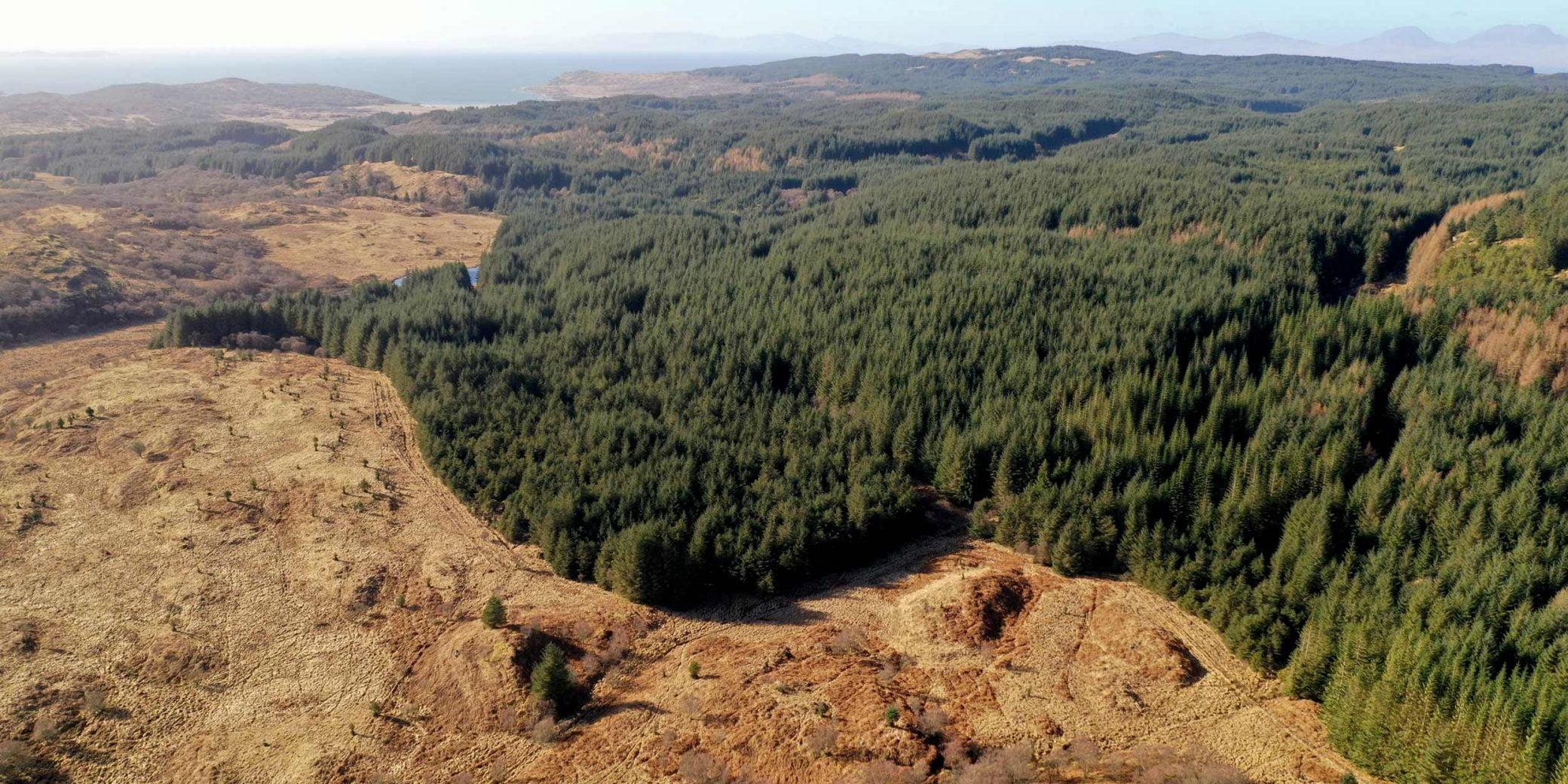 Goldcrest | Property - Loch a'Bharra - 05