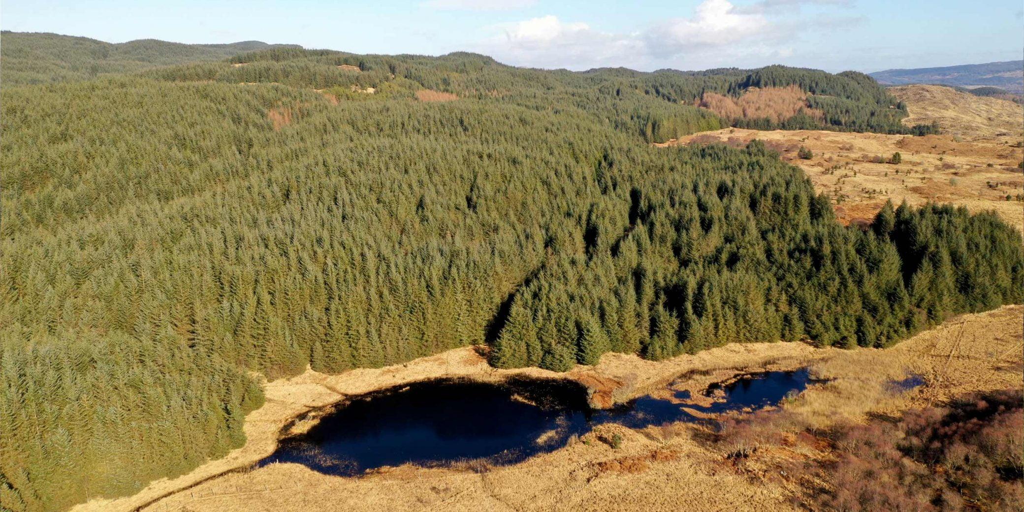Goldcrest | Property - Loch a'Bharra - 06