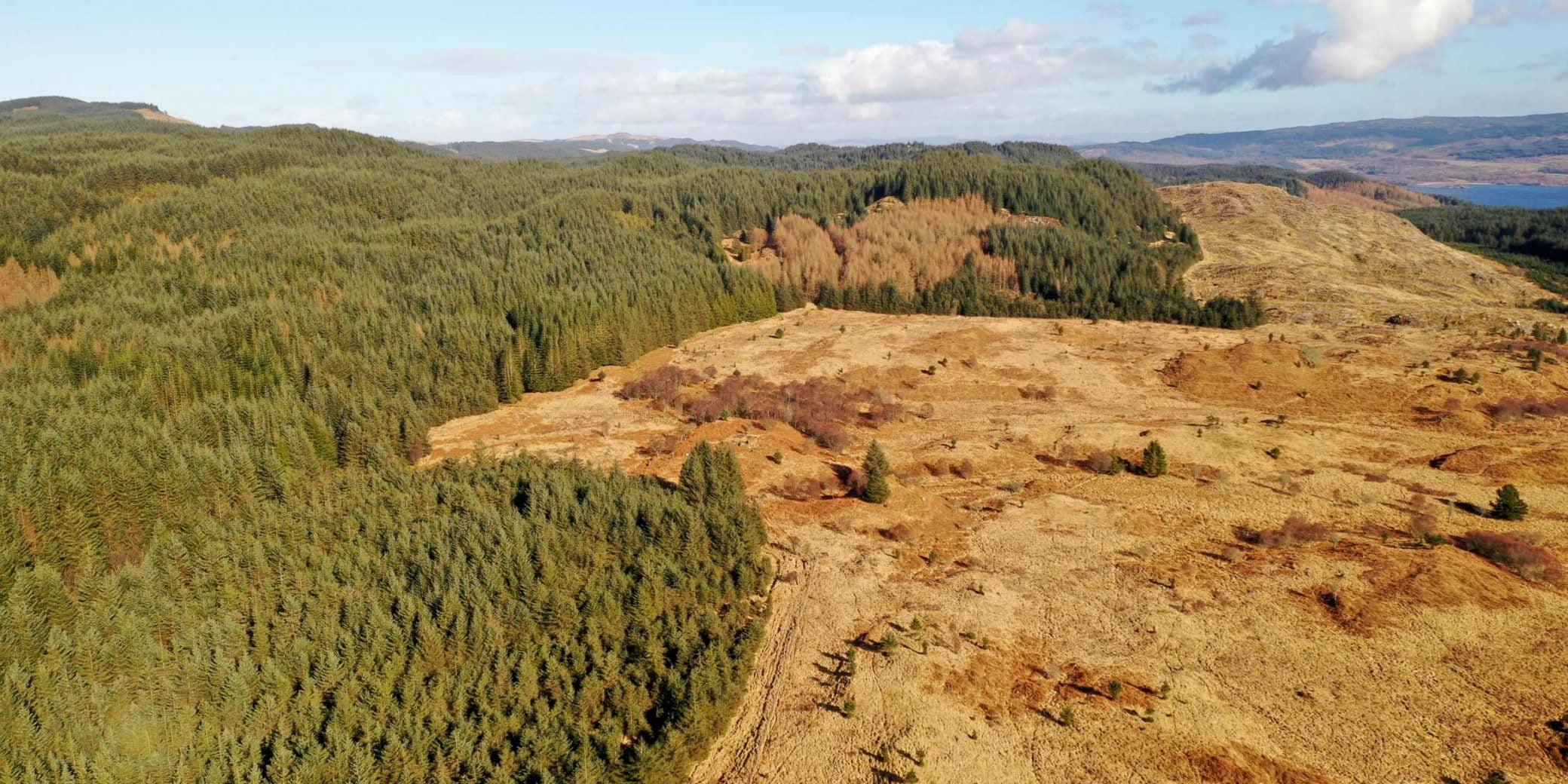 Goldcrest | Property - Loch a'Bharra - 07