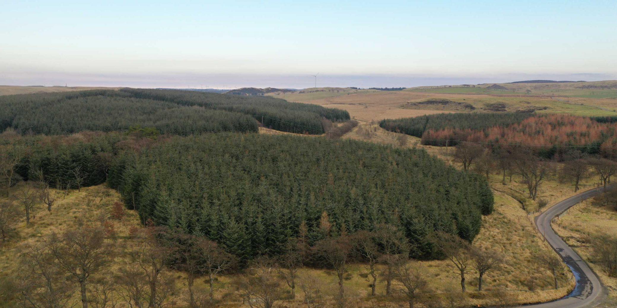 Goldcrest Land & Forestry | Central Scotland Portfolio — 02