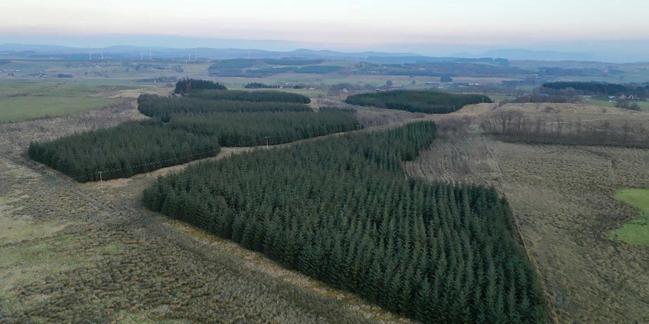 Goldcrest Land & Forestry | Central Scotland Portfolio — 03