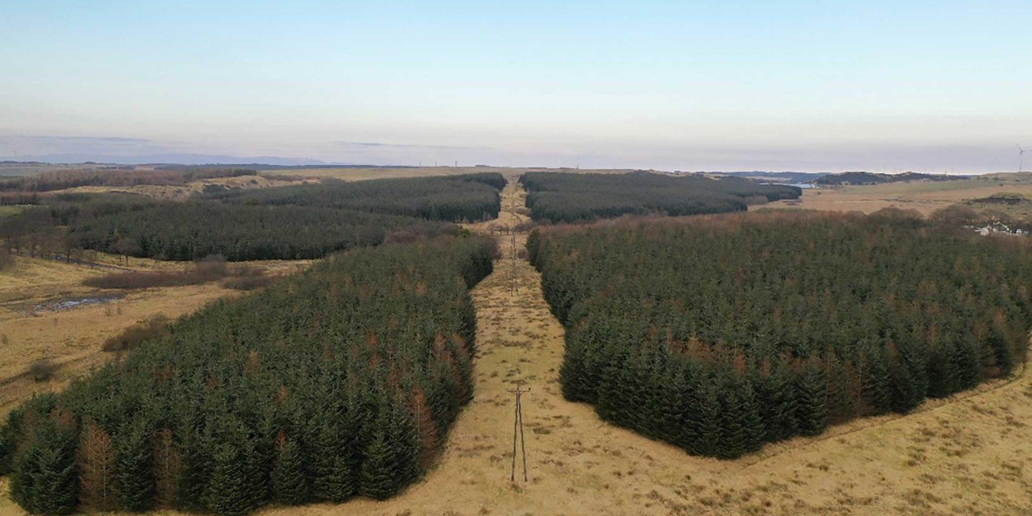 Goldcrest Land & Forestry | Central Scotland Portfolio — 05